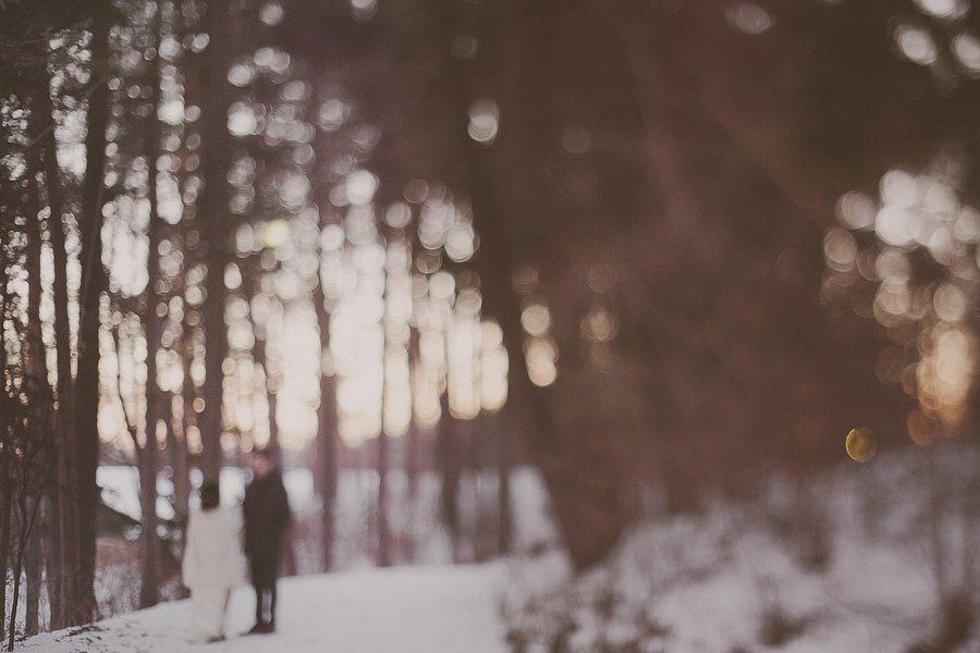 Clara + Greg . Minnesota
